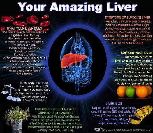 LIVER - Its what's up!